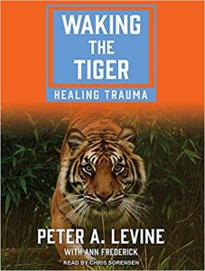 waking the tiger peter levine