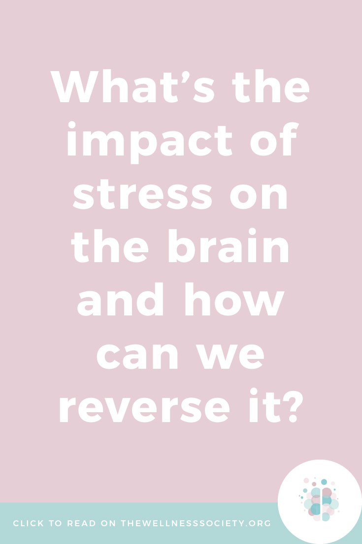 impact of stress on the brain