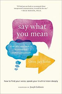 Say What You Mean A Mindful Approach to Nonviolent Communication by Oren J Sofer